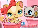 Kitty's Candies