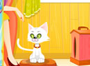 Virtual Cat Management