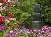 reasure Hunt - Colorful Garden