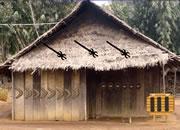 Andaman Tribe Island Escape