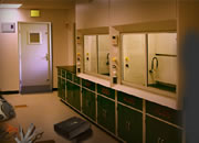 Escape Scientist Mad Lab