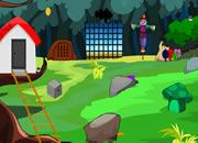 Cute Village Escape