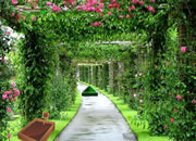 Mansion Garden Escape