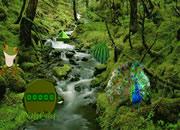 Froggy Fun Forest Escape