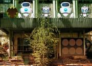 Abandoned Robotic Place Escape