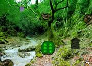 Snail Forest Escape