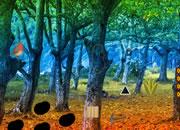 Detached Forest Escape