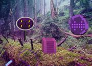 Bio Forest Escape