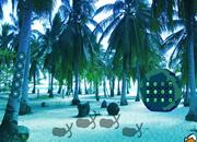 Coconut Farm Island Escape
