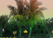 Palm Tree Forest Escape