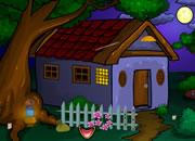 Forest Cottage Escape