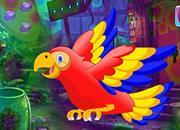 Colorful Parrot Escape