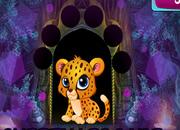 Weekend Escape: Cheetah Escape