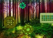 Forest Habitat Escape