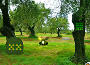 Olive Tree Forest Escape