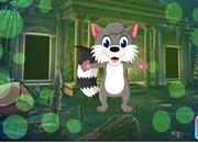 Gray Squirrel Escape