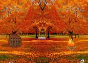Autumn Forest Turkey Escape