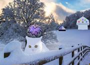 Magical Snow Animal Escape