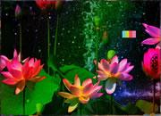 Fantasy Flower Girl Escape