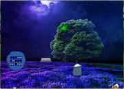 Little Zebra Moon Forest Escape