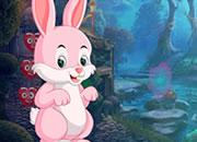 Pinky Rabbit Rescue