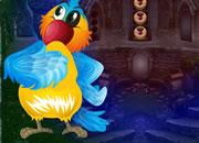 Blue Parrot Rescue