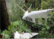 Amazon Jungle Escape