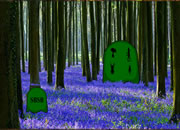 Flowers Forest Escape