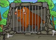 Bison Rescue