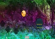 Ruins Forest Adventure Escape