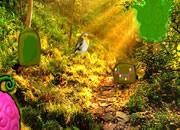 Devil Fruit Forest Escape