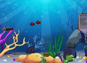 Ocean Fish Escape