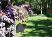 Pair Of Rabbit Escape