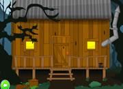 Escape Gator Country