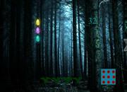 Dark Tree Forest Escape