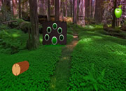 Escape From Fantasy Green Forest