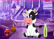Lovely Calf Escape
